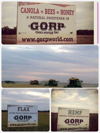 Signs for gorp